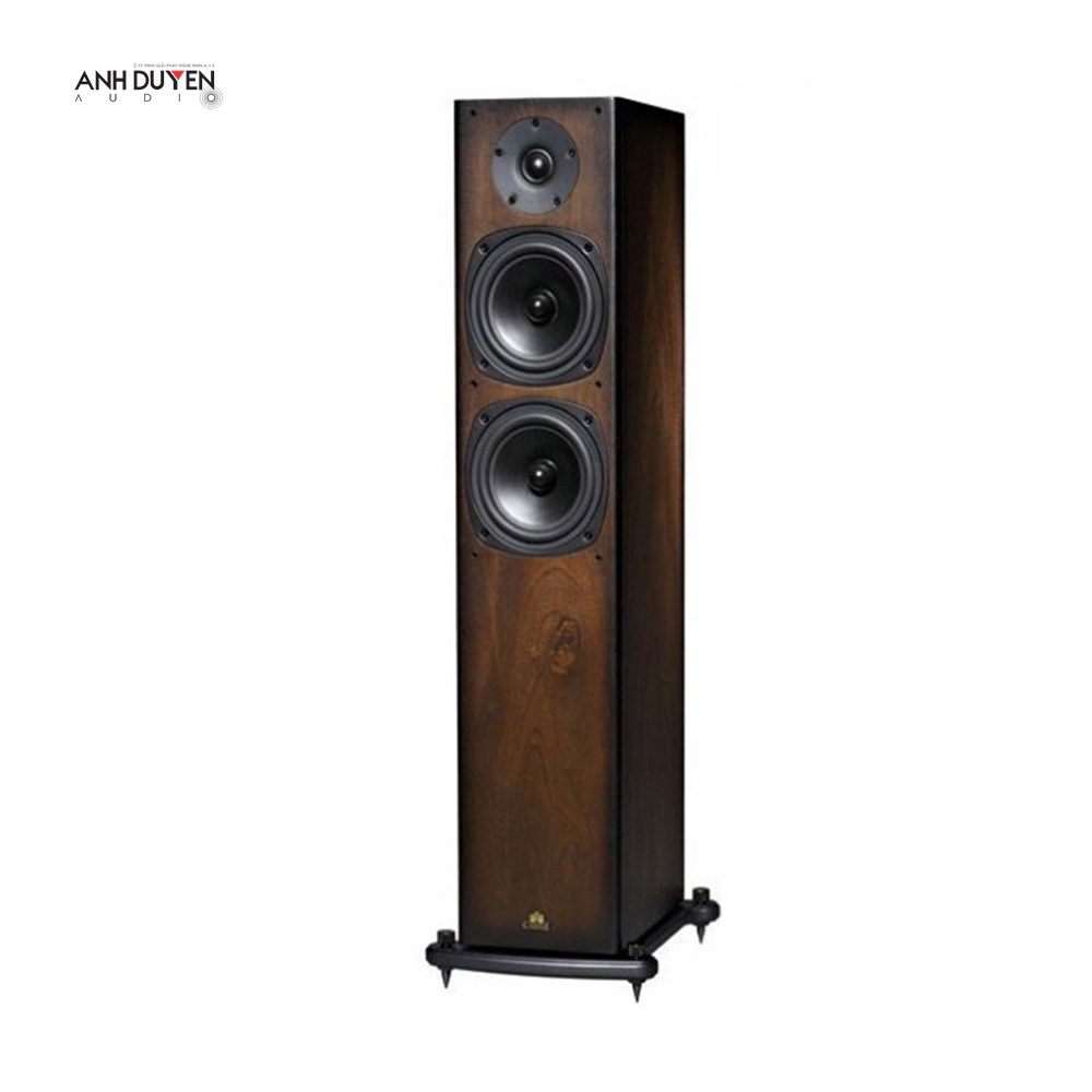 loa-castle-acoustics-knight-5-antique-oak